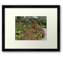 Garden Flowers in Summer Framed Print