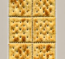 Saltines by Maria  Gonzalez