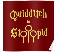 Quidditch is Stoopid Poster