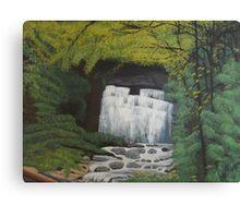 Whimsical waterfall Canvas Print