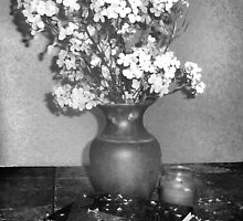 Fallen Petals by Nadya Johnson