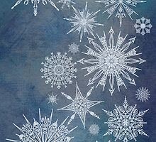 Snowflake Bouquet by Barbora  Urbankova