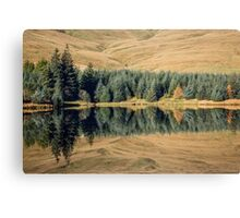 Reflections, Brecon Beacons Canvas Print
