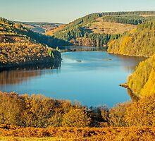 Llyn Brianne Reservoir Autumn by Nick Jenkins