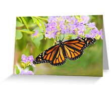 Monarch and Lavender Flowers Greeting Card