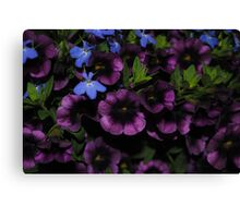 Purple with a Touch of Blue Canvas Print