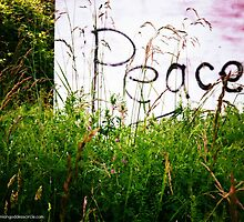 Peace by Kate  Rogers
