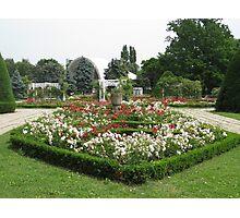 Roses Park Photographic Print