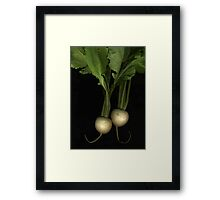 Two Turnips Framed Print