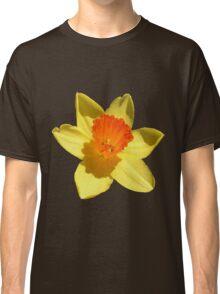 Daffodil Emblem Isolated Classic T-Shirt