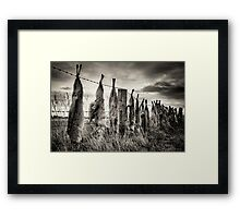 Controversy  Framed Print