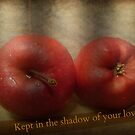 Kept in the shadow... by mariatheresa
