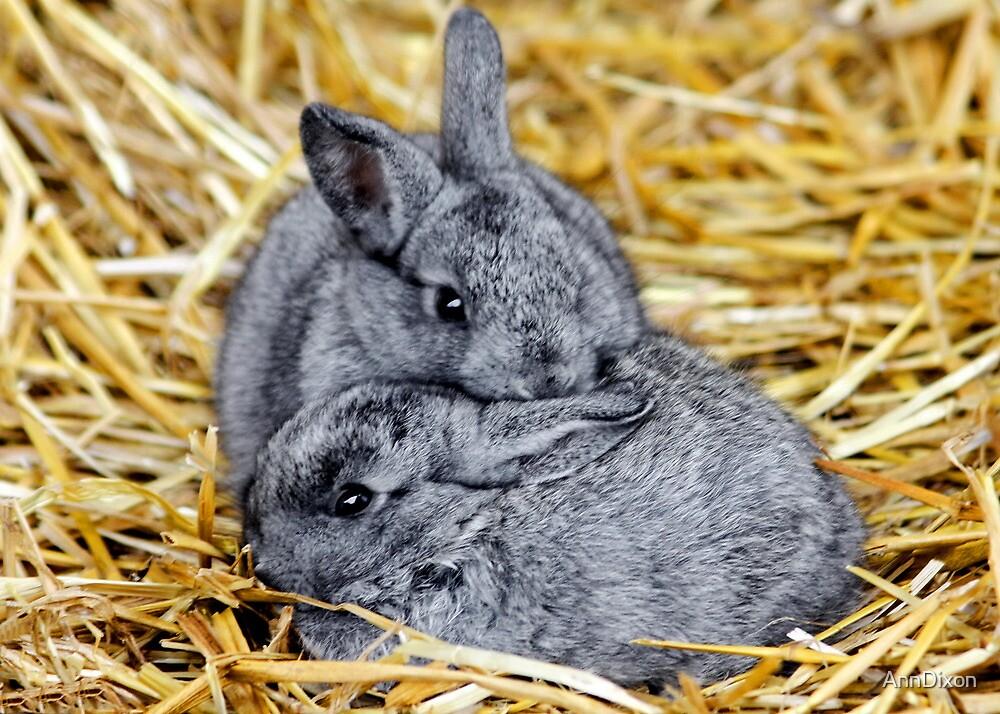Snuggle Bunnies by AnnDixon