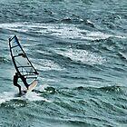 Windsurfer by Roxy J