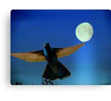 Hummingbird Moon II Canvas Print