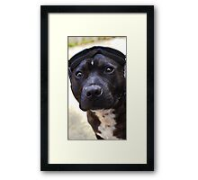 """""""You Lookin at me?"""" Framed Print"""