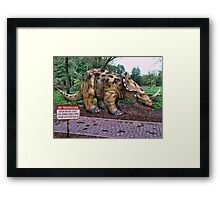 Government Experiments Taking Place Framed Print