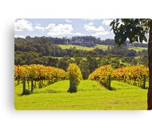 Ricketty Gate Vineyard Canvas Print