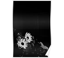 Flowers Black and White Poster