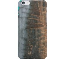 Spirit of the Flint - III iPhone Case/Skin