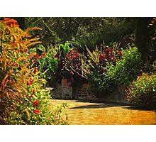 Secret Garden Paths Photographic Print