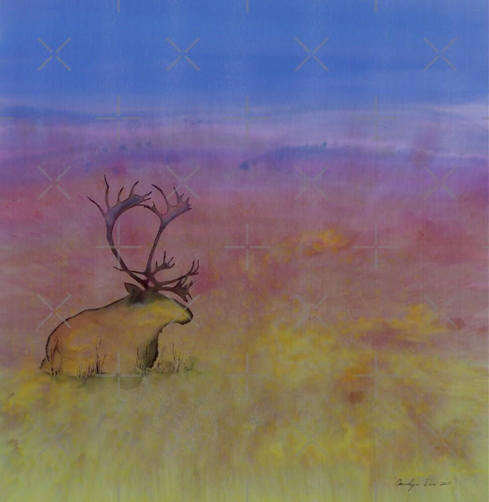 Caribou on the Tundra by carolyndoe