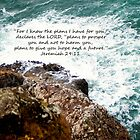 Jeremiah 29:11 by stacytoddphotog