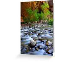 The Narrows Time Passages Greeting Card