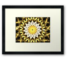 Queen Anne's Lace Gold Framed Print