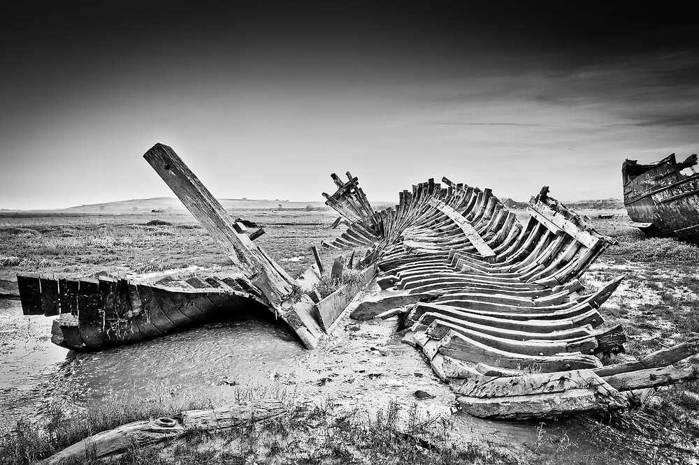 bleached bones by RedMann