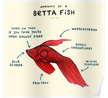 Anatomy of a Betta Fish Poster