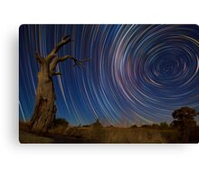 Dead Tree Stars II Canvas Print