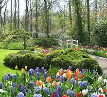Little Bridge - Keukenhof Gardens by BlueMoonRose