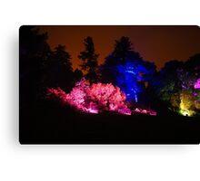 Colour Wheel (2) - Botanic Lights 2015 Canvas Print