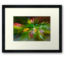 Rainy Day: Tulips, Zoomed Framed Print