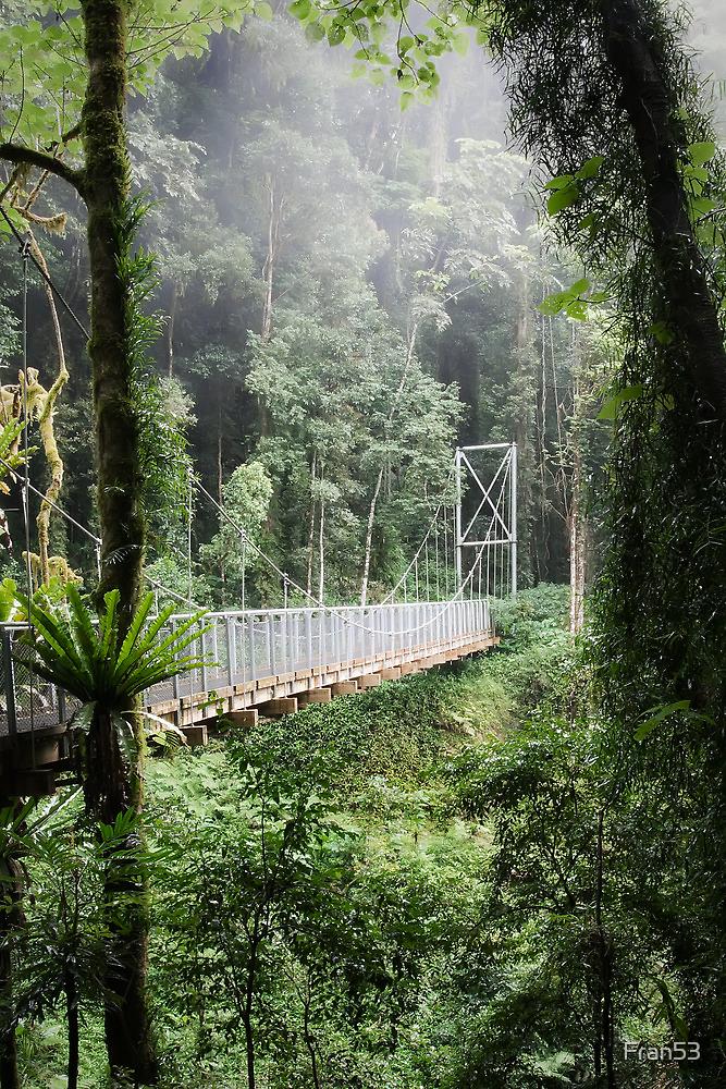 A bridge to Gondwanaland by Fran53