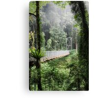 A bridge to Gondwanaland Canvas Print