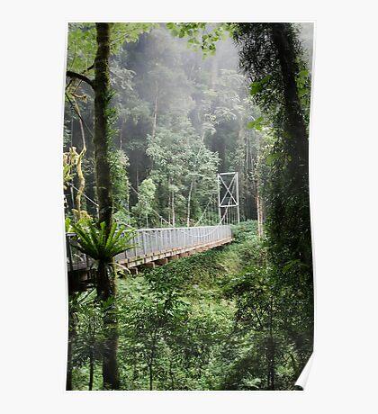 A bridge to Gondwanaland Poster