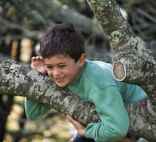 climbing trees by Anne Scantlebury