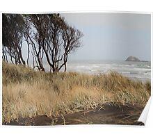 Muriwai beach Poster