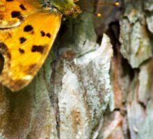 Eastern Comma Butterfly Sticker