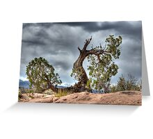 Trees Survival Mode Greeting Card