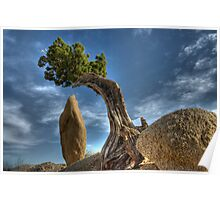 Tree And Stone Poster
