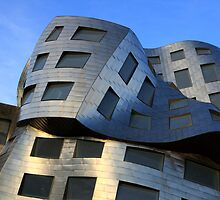 Brain Institute Building  by Bob Christopher