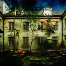 The Asylum Project Part I: Last House On The Left by Erik Brede