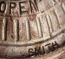 Macro photo of silver fire hydrant by crazylemur