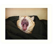 Shut up! I am trying to sleep! Art Print