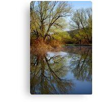 Tree Reflection Landscape Canvas Print