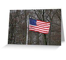 USA Flag - so beautiful Greeting Card