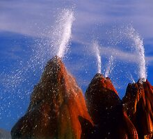 Fly Geyser Nevada by Bob Christopher